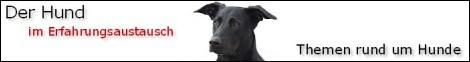 Der Hund mit Hundeforum