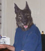 Mindestalter für Hunde ausführen? - letzter Beitrag von caronna