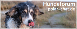 Hundeforum polar-chat.de