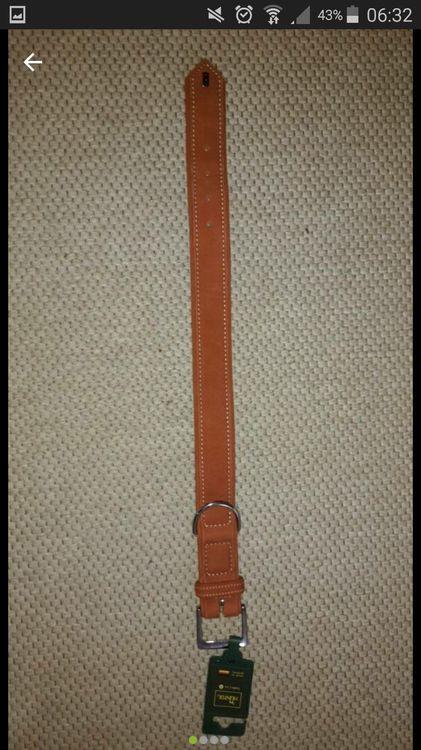 Lederhalsband rost.jpg