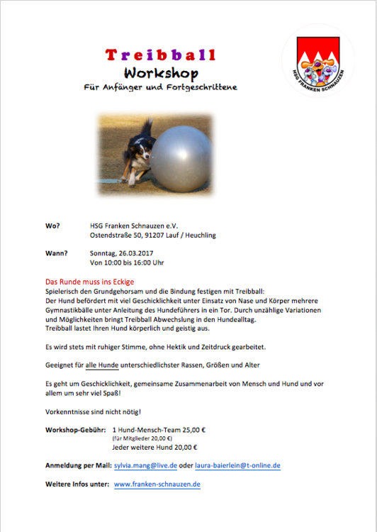 Treibball Workshop Flyer.png