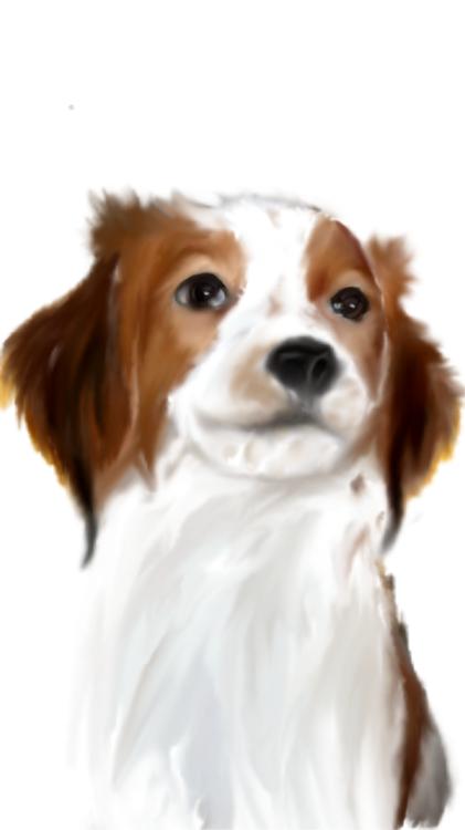 sketch-1507933572369.png