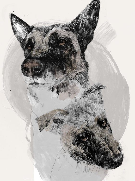 dogscanbark-dog-illustration-art-201.jpg