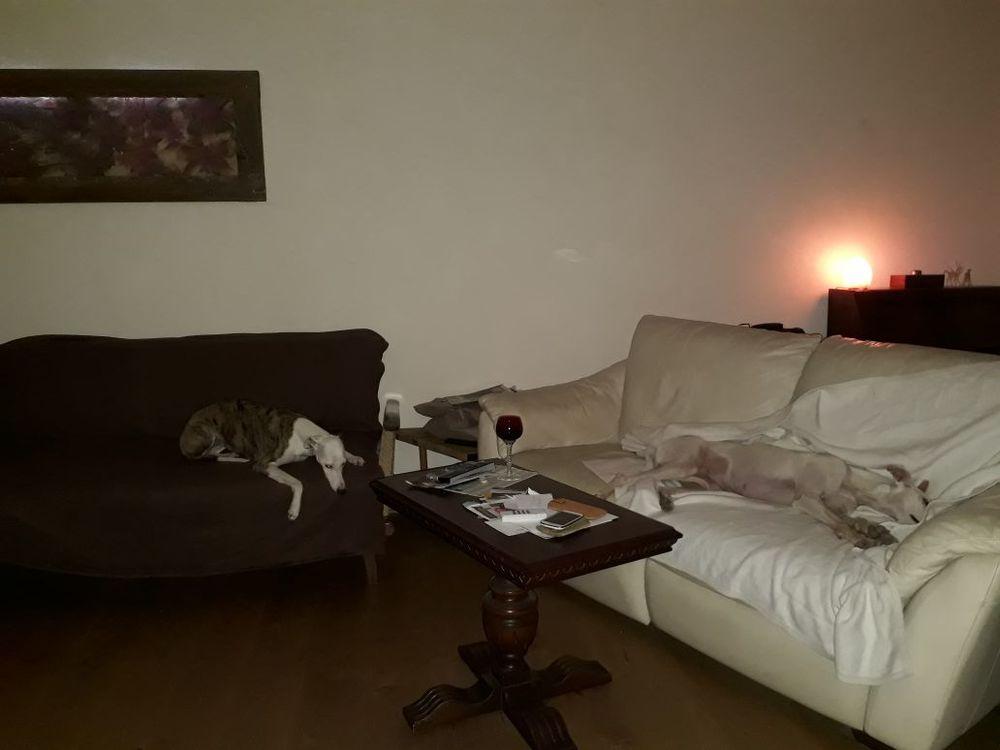 couch.jpg.07e8ad388928b189c2f55ab31ee65317.jpg