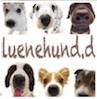 luenehund